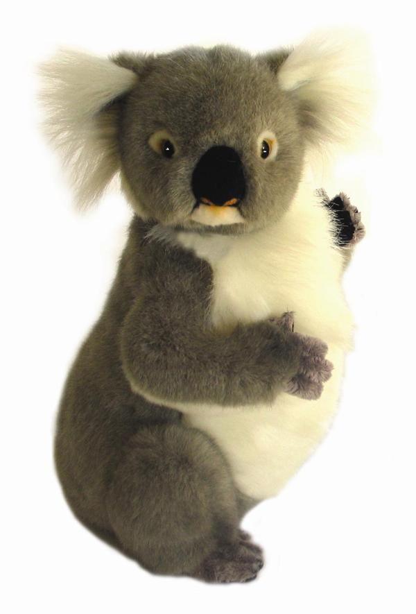 Koala Daisy plush toy