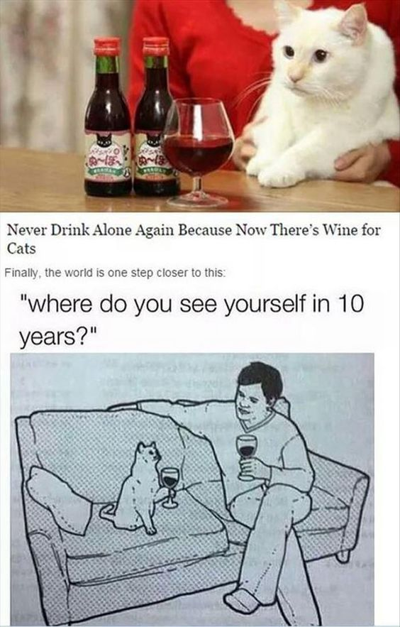 Wine For Cats #Cats, #Wine
