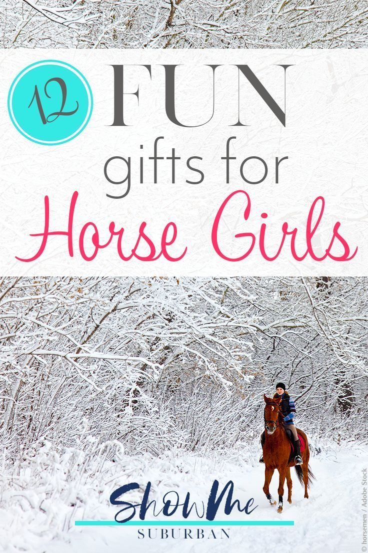 12 Popular Yet Simple Horse Lover Gifts For Her Horse Lover