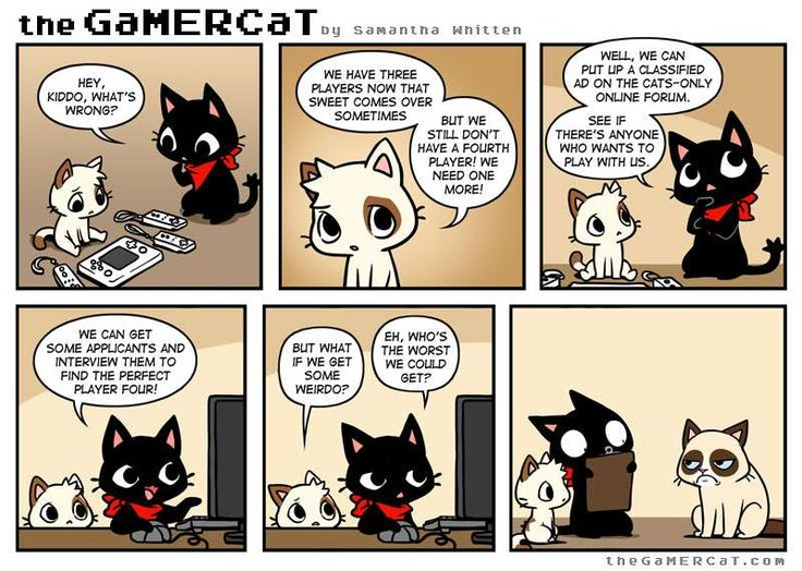 the GaMERCaT :: Missing Piece
