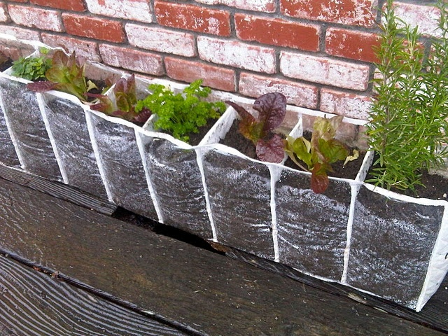 I'm going to do this!!! how about you?  Shoe organizer planter