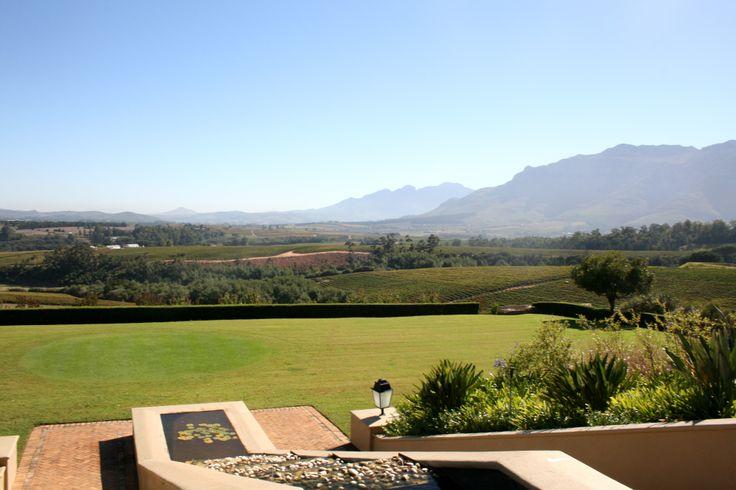 Views from Ernie Els wines