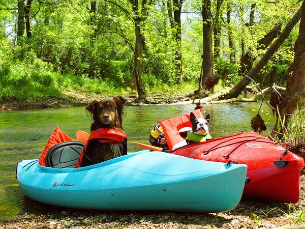 Kayaking on Flint Creek @ Wheeler National Wildlife Refuge & on the Flint River, Huntsville Alabama