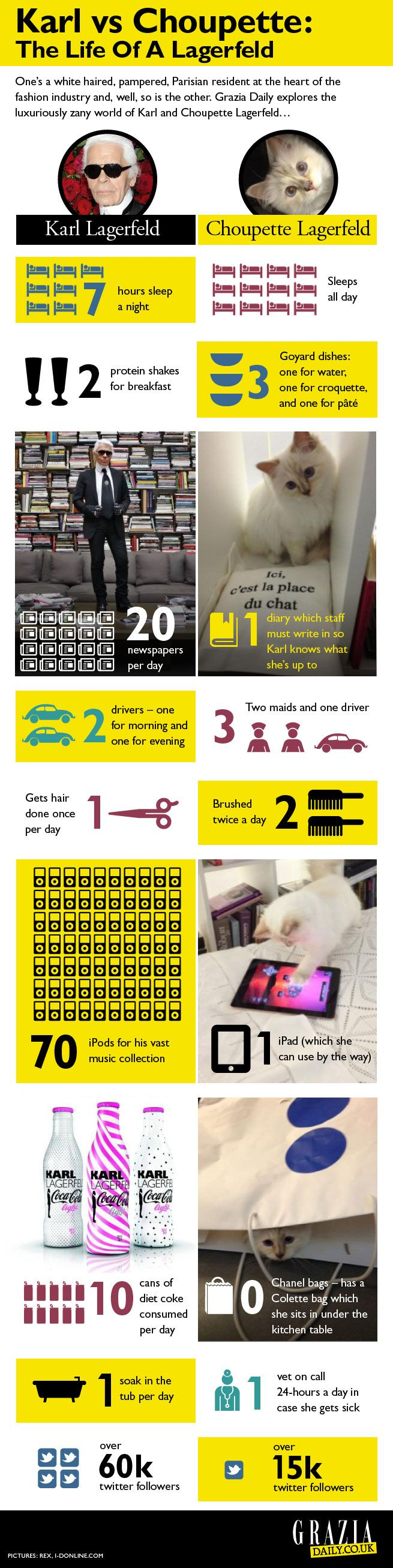 Karl Lagerfeld Vs Choupette Infographic: As The Pampered Cat Celebrates Her First Birthday We Explore Her Chic Life   Grazia Fashion #karllagerfeld #chanel #choupette