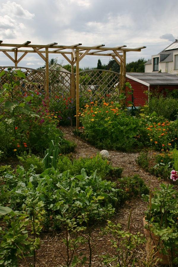 Nice Garden And Grape/vine Arbor