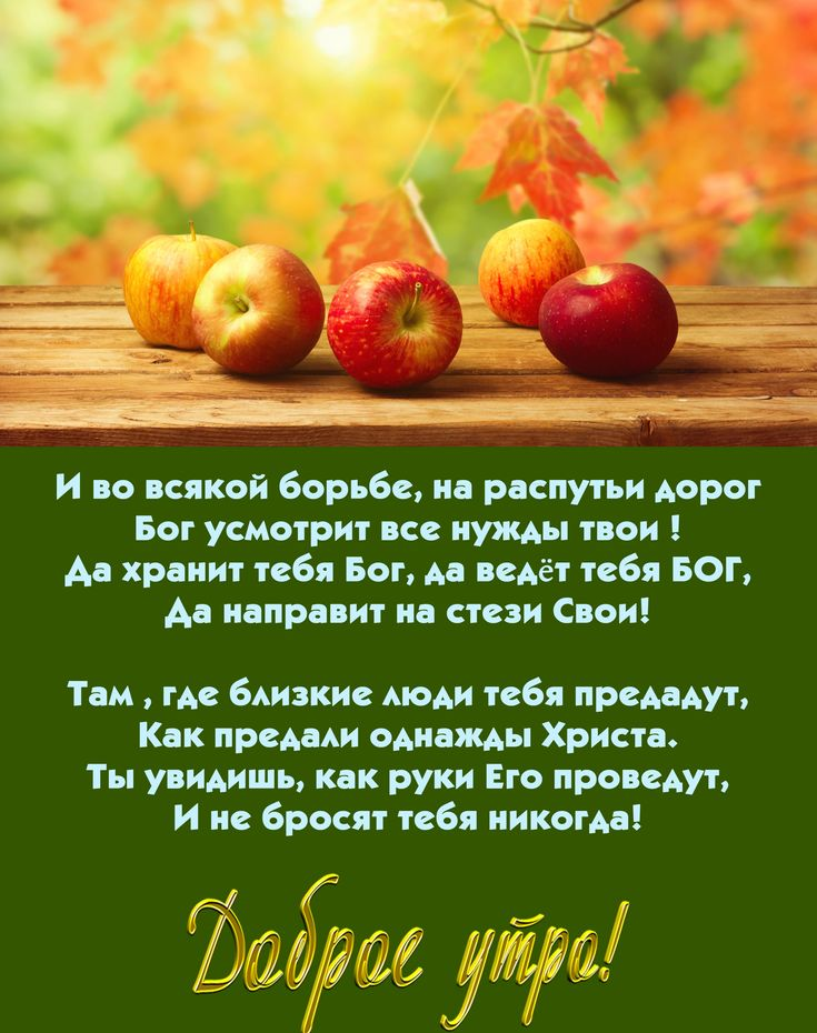 картинки фруктов из библии чтобы порадовать