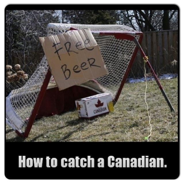 How to catch a Canadian hockey beer funny lol