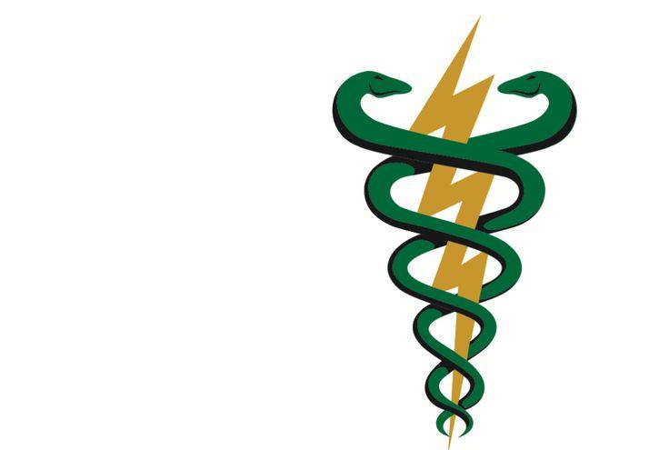acupuntura-fisioterapia-pilates-e-rpg-lucia-wild-logo-50650c4e.png (1024×689)