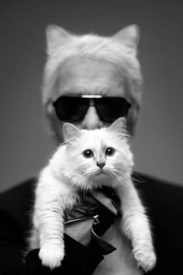 Karl Lagerfeld and Choupette, April 2014 - Harper's BAZAAR Magazine