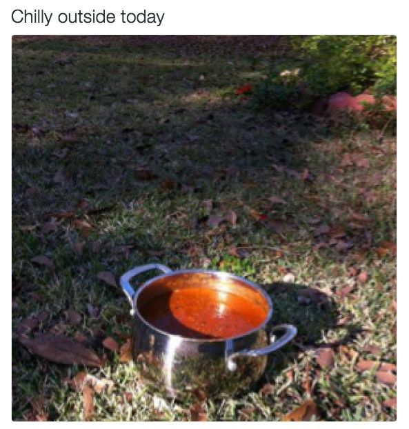 Today's weather report: | 27 Dad Jokes That Are So Bad They're Actually Amazing