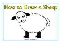 How to draw a sheep posters (SB8230) - SparkleBox