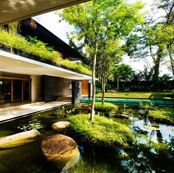 The Cluny House 5 sustainable architecture by Guz Architects: Biophilic Design
