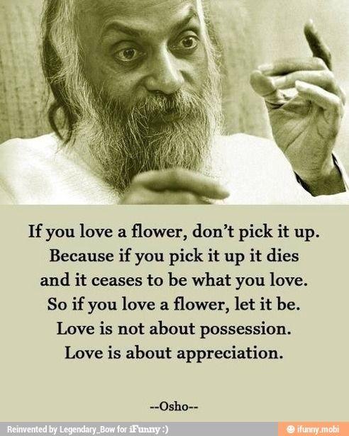 """""""Se você gosta de uma flor, não pegue-a. Porque, se você pegá-la ela morre e deixa de ser o que você ama. Por isso, se você gosta de uma flor, deixa estar. O amor não é sobre a posse. O amor é sobre a apreciação."""" Osho"""