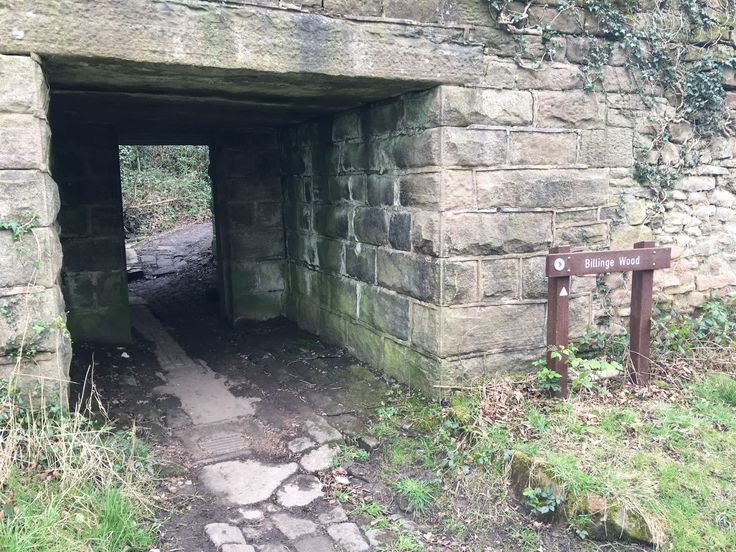 """Wave hello to this awesome post! 👋 """"The Secret Garden"""" (Billinge Woods) http://thebeautyaroundus.blog/2017/04/05/the-secret-garden-billinge-woods/"""