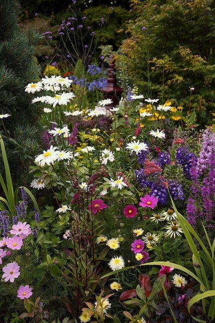Perennials Lower Garden Summer. English garden for all seasons. Four Seasons Garden, Walsall, West Midlands, UK