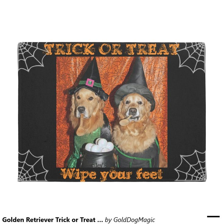 Golden Retriever Trick Or Treat Witches Doormat Door Mat