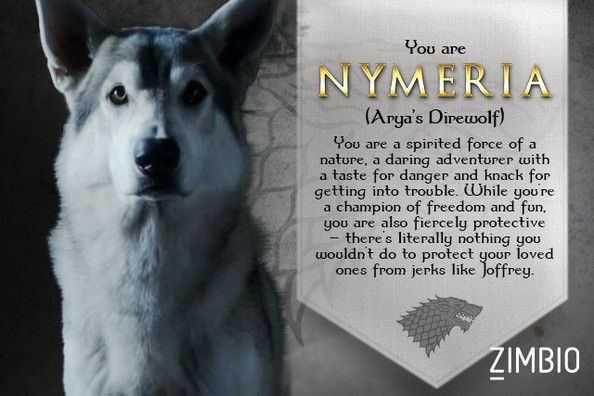I took Zimbio's 'Game of Thrones' direwolf quiz and I'm Nymeria! Who are you? #ZimbioQuiz