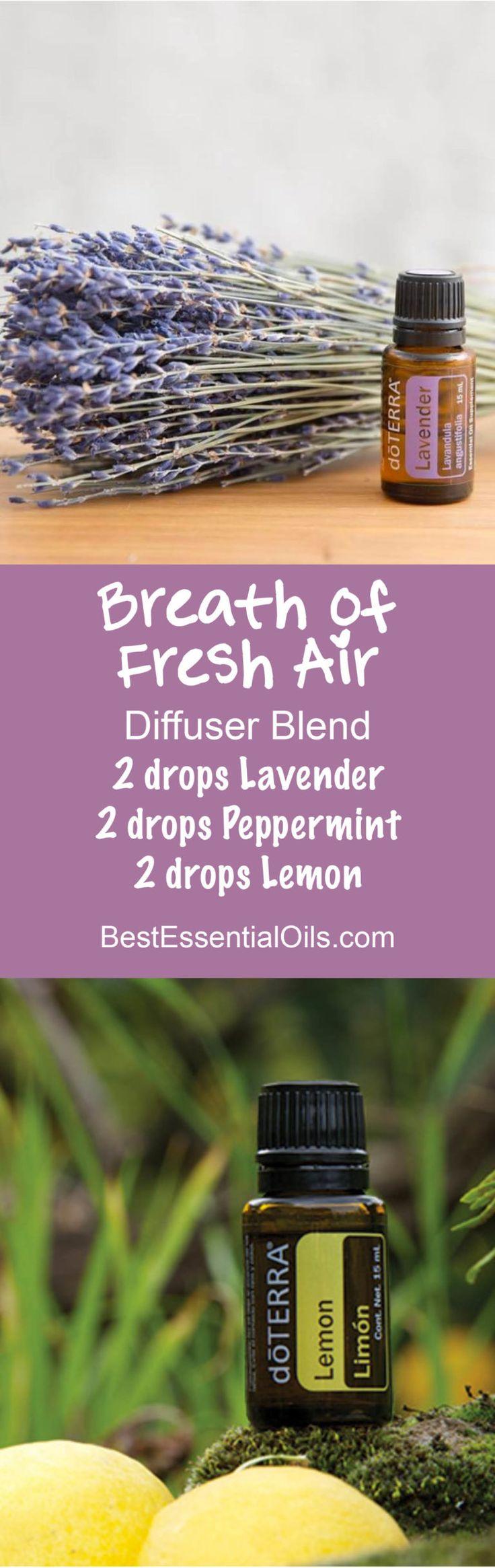 Breath of Fresh Air doTERRA Diffuser Blend