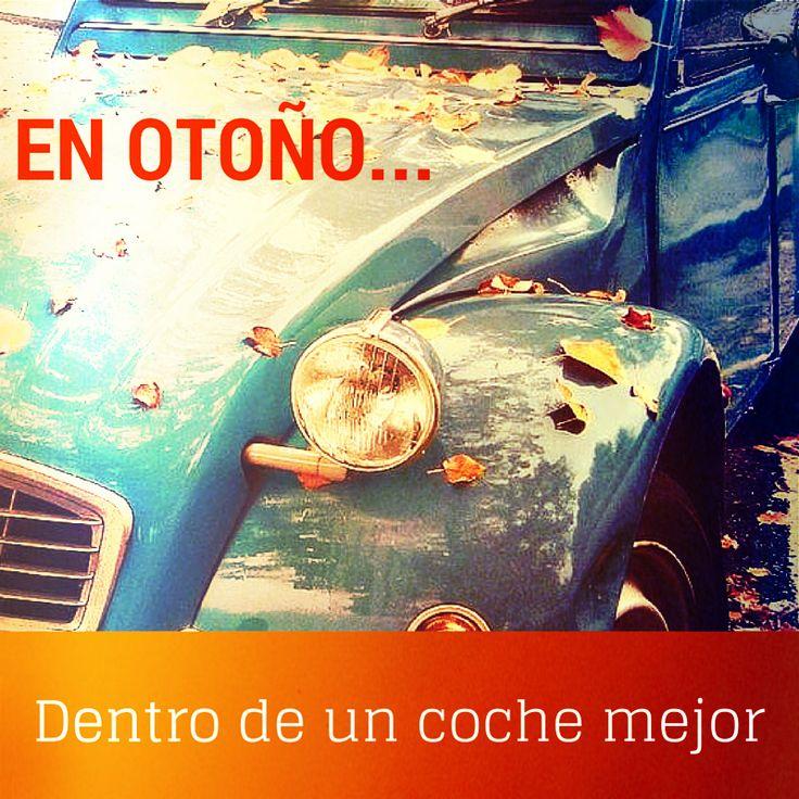En Otoño, dentro de un coche mejor... #Segurnautas! ¿Qué tal lleváis el otoño? Hoy parece uno de esos días de lluvia viento y frío en los que lo mejor es o el sofá de casa o el coche para pasear. ¿Vosotros qué opináis?