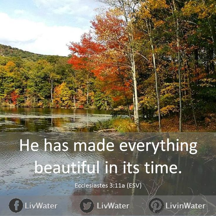 Yet God has made everything beautiful for its own time. He has planted eternity in the human heart, but even so, people cannot see the whole scope of God's work from beginning to end. (Ecclesiastes 3:11 NLT)  https://www.facebook.com/livwater/photos/10153257834333549
