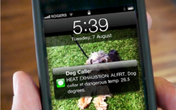 If I had a dog, you know it would have one of these! - A Canadian firm has invented a dog collar that sends a text alert when your pooch is too hot.