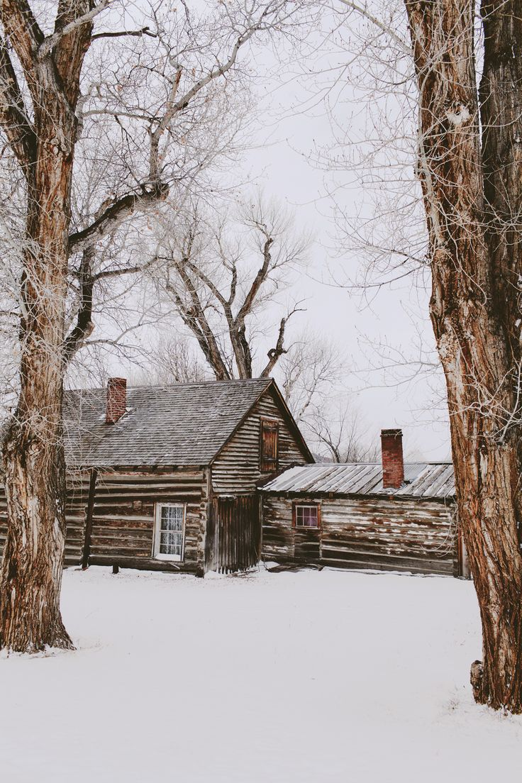 Country Living ~ Winter ~ Old cabin in the woods...come sit by the warm fire.