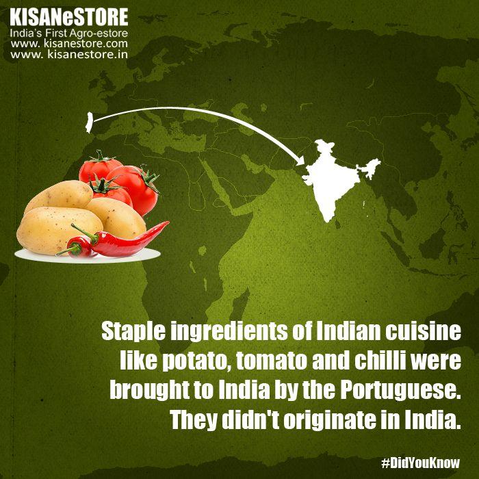 #DidYouKnow: Potato, chilli and tomato didn't originate in India. #IndianCuisine