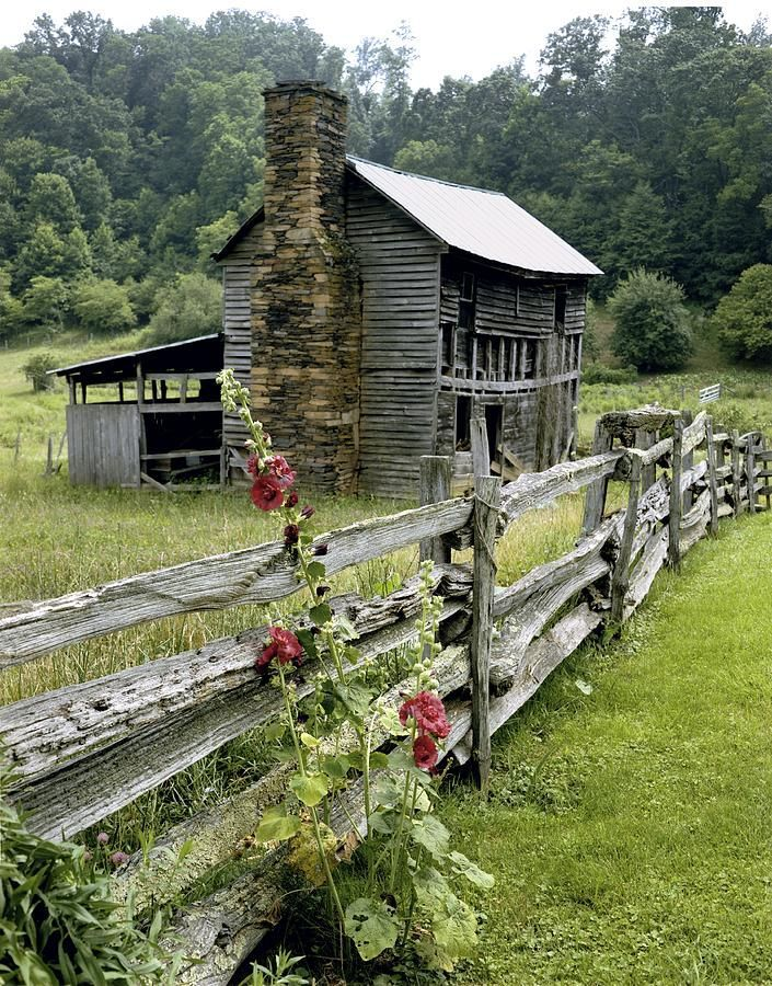 rural North Carolina~ scenes like this were all around Pilot Mountain~ we saw them every day