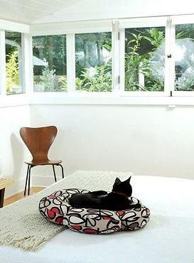 With a fun and stylish exterior and plush, comfortable interior, the Bloom Pet Bed will quickly become your cat's favorite place to rest while adding character to your home.