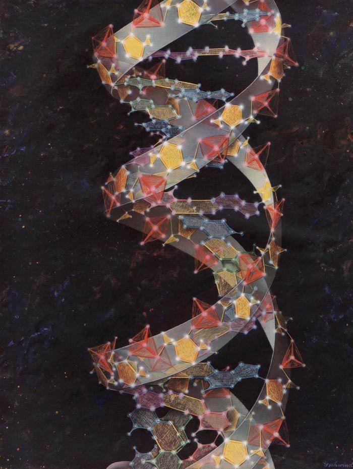 design-is-fine:  Max Gschwend, The DNA spiral, illustration for Fortune, June 1960. USA. Via fulltable.