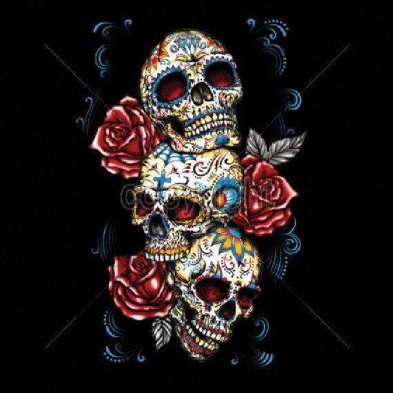 Unisex T Shirt Day of the Dead Three Sugar Skulls and Roses  Free Shipping to USA 17033
