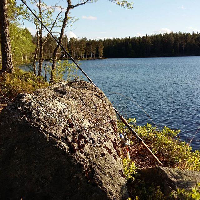 Just another day in the field 🎣🐟😆 . . #slimmenrick #norway_photolovers #eastnorway2day #dreamynorway #hedmark #utepåtur #norge.jpg #norway #norgeidag #visitnorway #visithedmark #fishingseason #summerishere #dreamchasersnorway #villmarksliv #natur #sjø #outdoors #myview #mylife #norway🇳🇴 #norgefoto #norsknatur