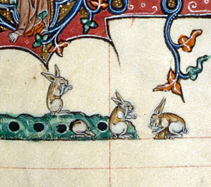 "¿Conejos hablando por el teléfono móvil? ""Gorleston Psalter"". Inglaterra s. XIV (British Library, Add 49622, fol. 107v)  https://www.facebook.com/discardingimages"