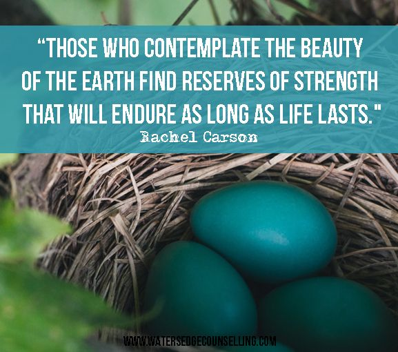 """""""Those who contemplate the beauty of the earth find reserves of strength that will endure as long as life lasts.""""—Rachel Carson"""