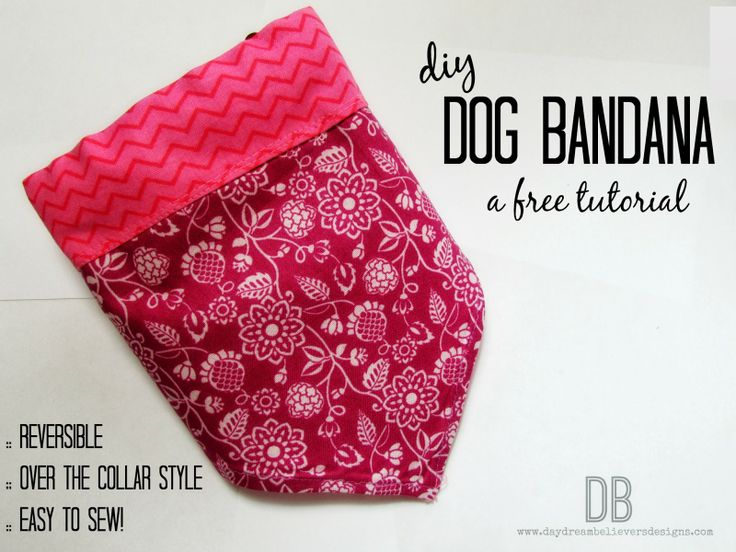 17 best images about free sewing tutorials from daydream for Dog bandana template