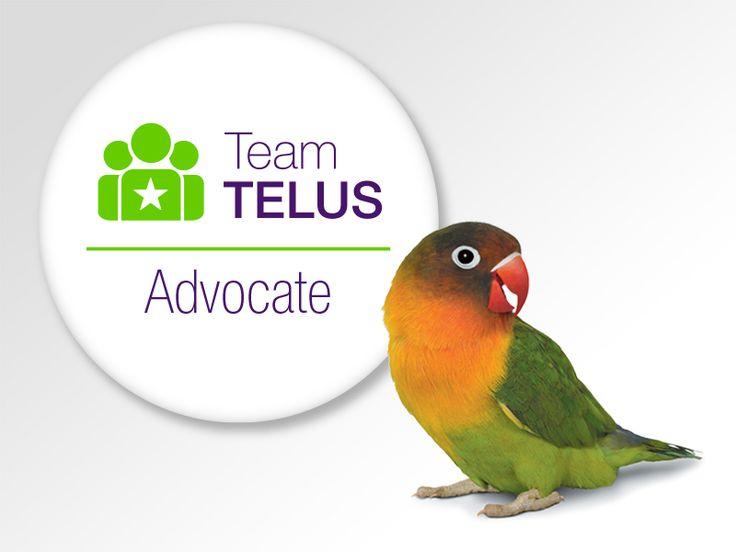 SO proud to be on #TeamTELUS !