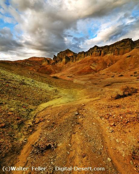 Mojave Desert Native Plants: Mojave Desert Points Of Interest