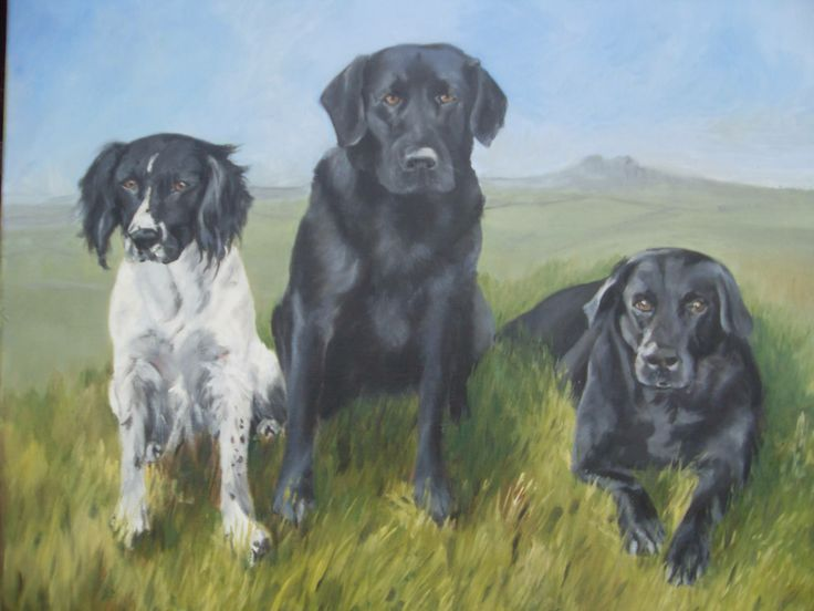 I was asked to paint these three super #dogs for someones birthday. I was lucky enough to be there when she received her gift. She was so thrilled - and cried! I am thrilled too, a #painting can so wonderfully hit the spot! #portrait #petportrait