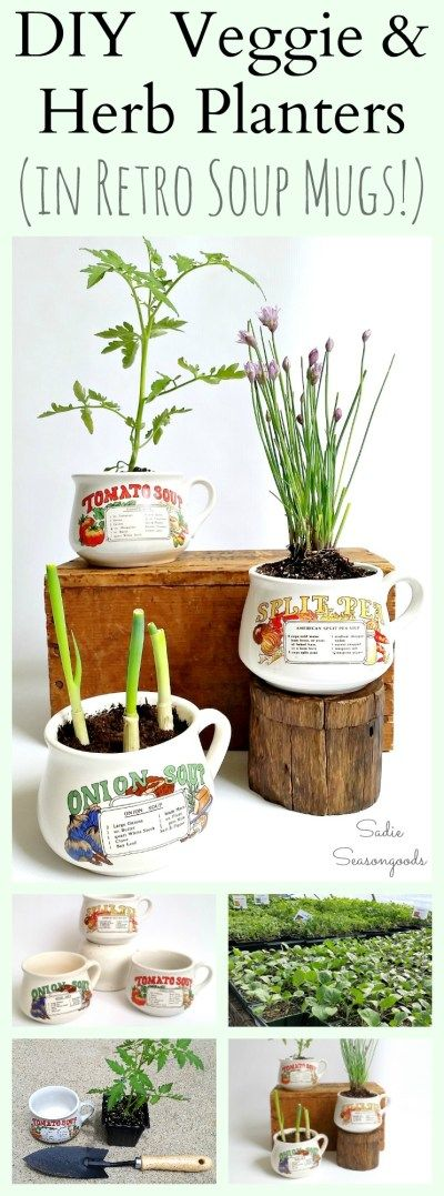 Vintage / Retro soup mugs are a constant staple on thrift store shelves. Why not repurpose and upcycle one into a DIY planter, with an herb or vegetable seedling / plant that corresponds to the printed recipe on the side? It makes for a lovely hostess gift or other small token of appreciation- easy, simple, adorable, and inexpensive! #SadieSeasongoods / www.sadieseasongoods.com