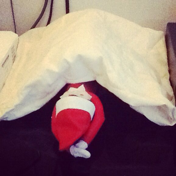 Camp elf! Mitsy taking some r&r after her heavy Thursday night!!!