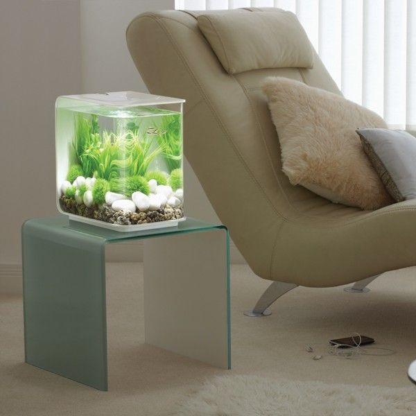 Aquarium biOrb 15L FLOW Blanc - 001731W - Copyright Médor et Compagnie