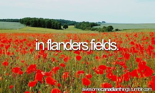 In Flanders fields the poppies blow  Between the crosses, row on row,  That mark our place: and in the sky  The larks still bravely singing fly  Scarce heard amid the guns below.    We are the dead: Short days ago,  We lived, felt dawn, saw sunset glow,  Loved and were loved: and now we lie  In Flanders fields!    Take up our quarrel with the foe  To you, from failing hands, we throw  The torch: be yours to hold it high  If ye break faith with us who die,  We shall not sleep, though poppies…
