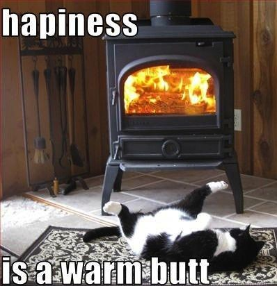 HAPPINESS IS A WARM BUTT.