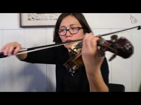 The Lonely Shepherd (Kill Bill Movie Theme) Cover by The Ocdamia Strings