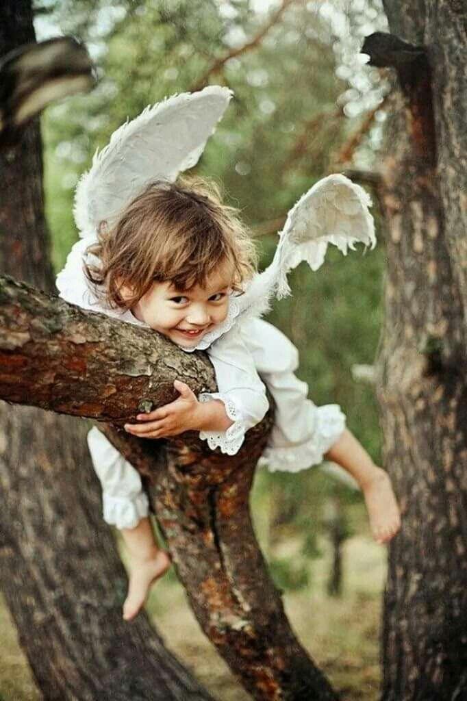 Смешные картинки ангел