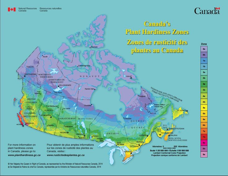 Canada s plant hardiness zones zones de rusticit des for Canadian gardening tips