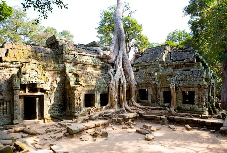 Ta Prohm Temple  Planning for December 2016