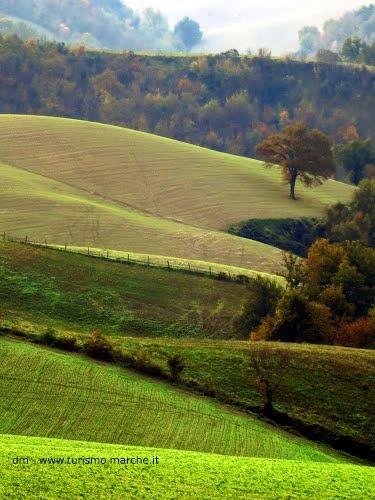 Montefeltro landscape, Marche - Italy