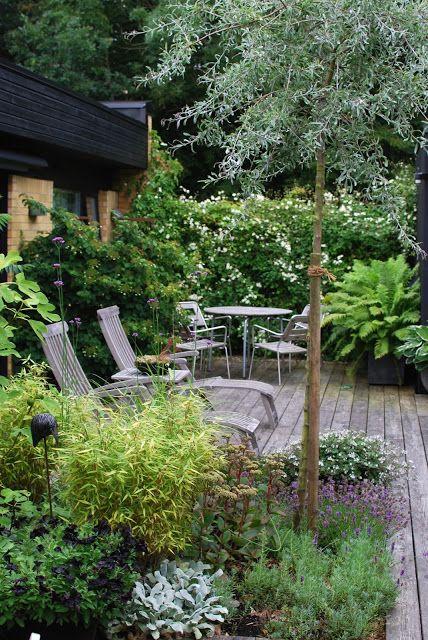 Almbacken: Trädgårdsbesök