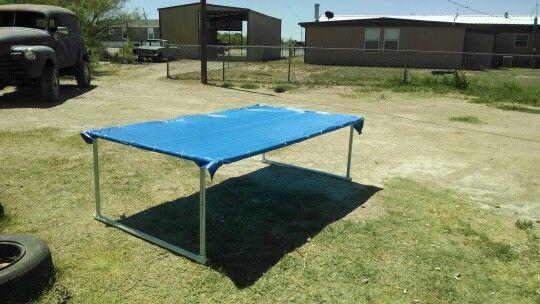 Diy dog shade. Pvc and a tarp